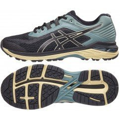 ASICS GEL GT 2000 V6 PLASMA GUARD